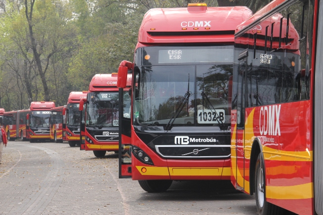 Mexico buses